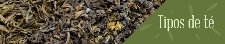 Distintos tipos de té
